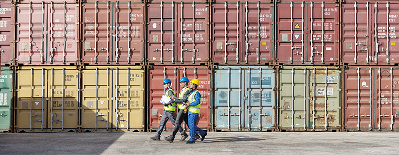 Logistics professionals in shipping yard